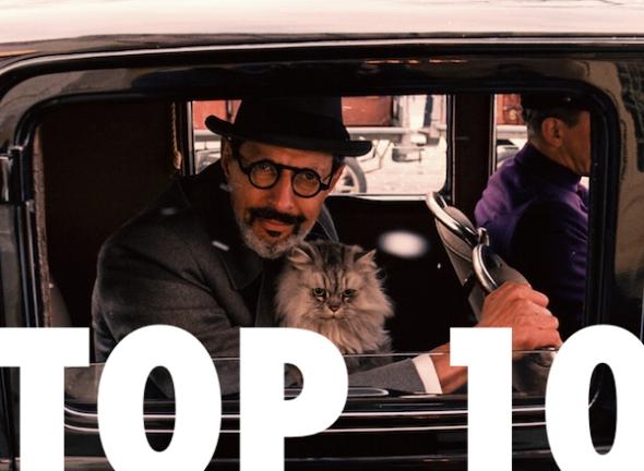Top 10 Delphine